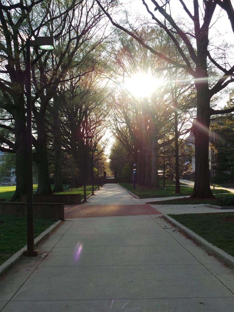 salah satu area kampus
