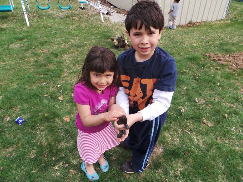 Harry dan Fatima menunjukkan bebek kesayangan mereka