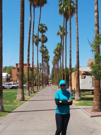 Palm Way di Arizona State University
