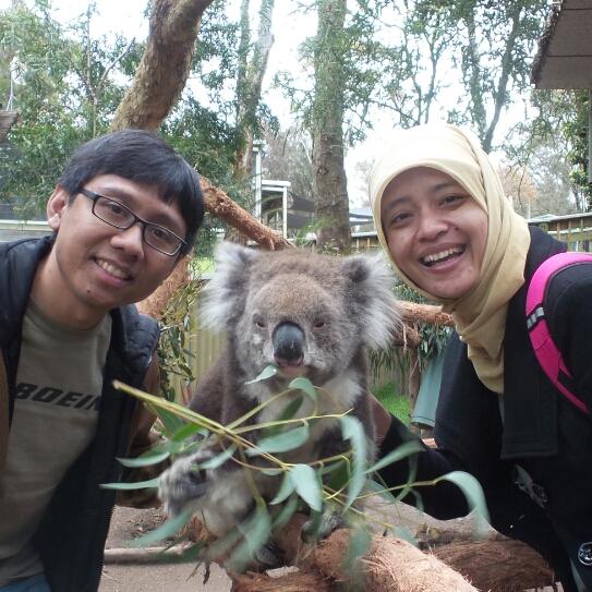 koala_zpsytktzxx9